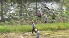 益阳沅江:湖堤拉网巡查无死角 穿堤建筑物是巡查重点区