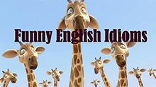 好玩的英语俚语