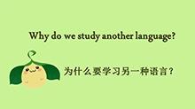为什么要学英语