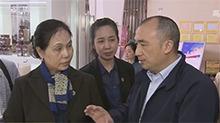 老挝新任驻华大使考察长沙金霞保税区老挝馆