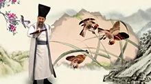 中华文明之美20161010期:四害麻雀翻身为国家保护动物