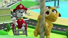 斑点狗Marsha:放心吧!我会安全送你下去