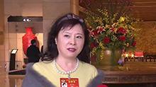 """湖南要搞自贸区 代表委员想到了一起 全国政协委员冯丹藜:制度创新 找寻湖南自己的""""路子"""""""