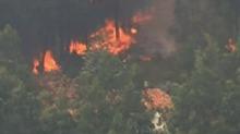 葡萄牙:山火持续 中国使馆提醒中国公民注意安全
