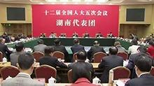 湖南代表团举行第五次全体会议