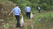 桃源:查获一起非法运输野生动物案