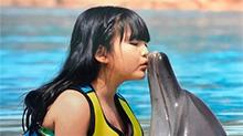 李湘一家度假穿亲子装 王诗龄亲吻海豚画面美好
