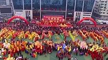 怀化洪江区:百龙闹新春