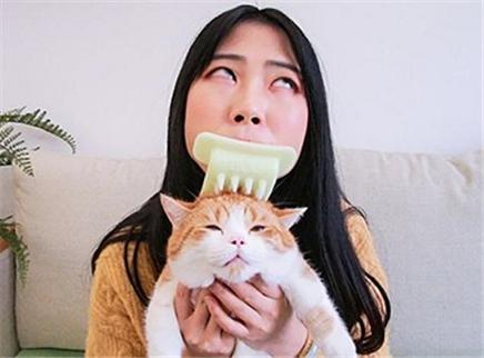 这个猫舌梳有倒刺 专用来舔猫猫