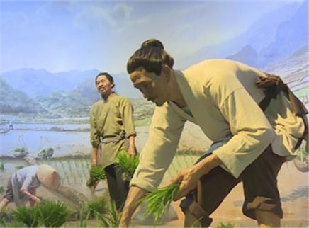 隆平水稻博物馆9月底开馆